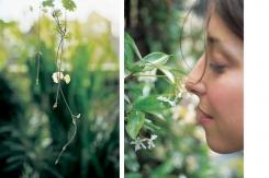 mead-virgin-gardener-antman1-1000-04