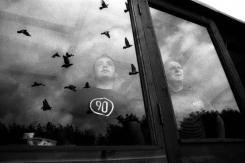 zac-waters-birdmen-antman1-1000-19
