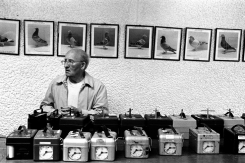 zac-waters-birdmen-antman1-1000-12